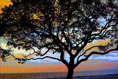 Photograph - Beach  Tree -  No. 1 - Ver 1 by William Meemken