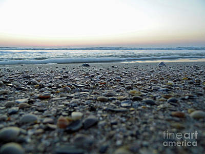 Photograph - Beach View by D Hackett