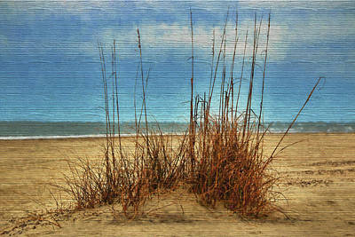 Photograph - Beach View by Dave Bosse