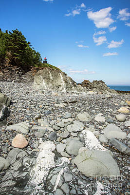 Photograph - Beach View Of West Quoddy Head by Alana Ranney