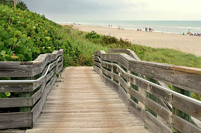 Photograph - Beach Walk by Laura Fasulo