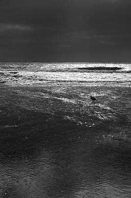 Photograph - Beach Walker by Robin Street-Morris