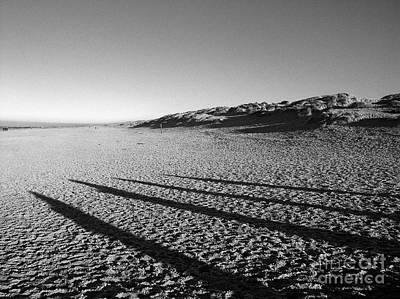 Beach With Shadows Art Print by Sascha Meyer