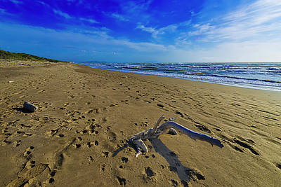 Photograph - Beach With Wood Trunk - Spiaggia Con Tronco II by Enrico Pelos