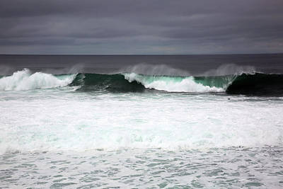 Photograph - Beachcomber by Robin Street-Morris