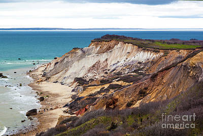Photograph - Beachcombers On The Vineyard by Michelle Wiarda-Constantine