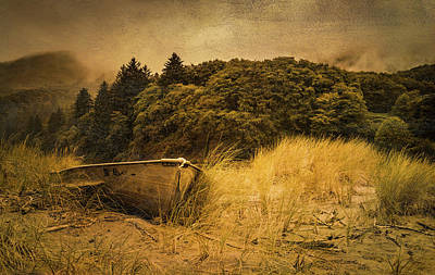 Photograph - Beached Boat by Don Schwartz