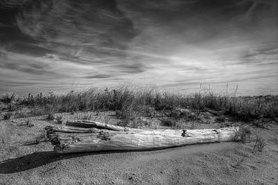Photograph - Beached Log At Shinnecock by Steve Gravano