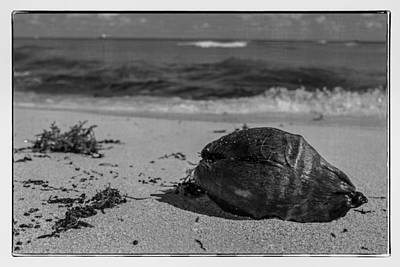 Photograph - Beachside by Melinda Ledsome