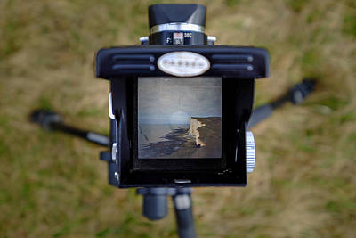 Photograph - Beachy Head Tlr View by Will Gudgeon