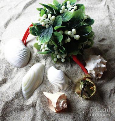 Photograph - Beachy Mistletoe II by Mary Haber