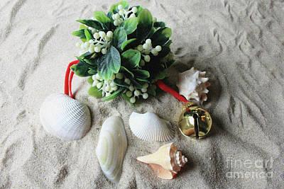 Photograph - Beachy Mistletoe by Mary Haber