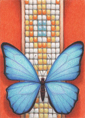 Animals Drawings - Beaded Morpho by Amy S Turner