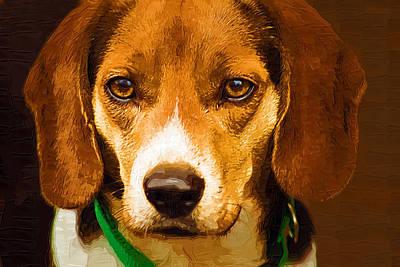 Beagle Hound Dog In Oil Art Print by Kathy Clark