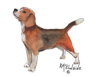 Beagle Watercolor Painting By Kmcelwaine Art Print