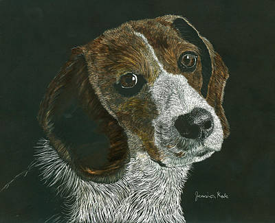 Mixed Media - Beagle Portrait by Jessica Kale