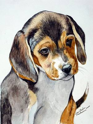 Painting - Beagle Puppy by Christopher Shellhammer