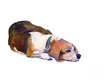 Beagle Thoughts Art Print by Amy Kirkpatrick