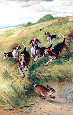 Painting - Beagling by G Muss Arnolt