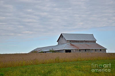 Photograph - Bean Barn by Kathy M Krause