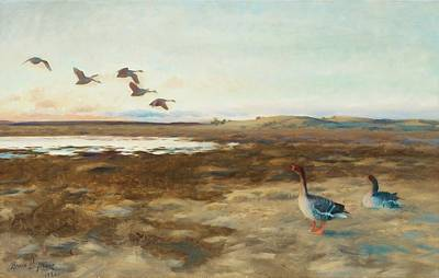 Flying Geese Painting - Bean Geese by Bruno Liljefors