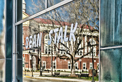 Photograph - Bean Stalk Reflection by Sharon Popek