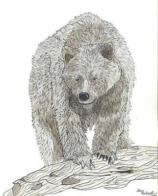 Bear  Art Print by Ben Roback