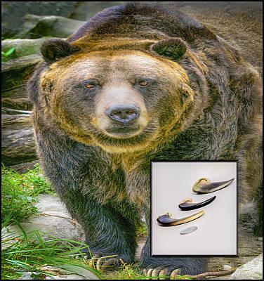 Photograph - Bear Claws   by LeeAnn McLaneGoetz McLaneGoetzStudioLLCcom