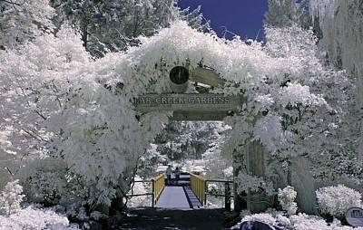 Photograph - Bear Creek Gardens by Bill Kellett