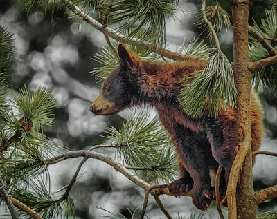 Digital Art - Bear Cub In A Tree 3a by Ernie Echols