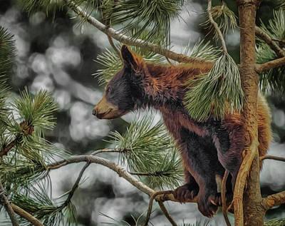 Digital Art - Bear Cub In A Tree 3a by Ernie Echols