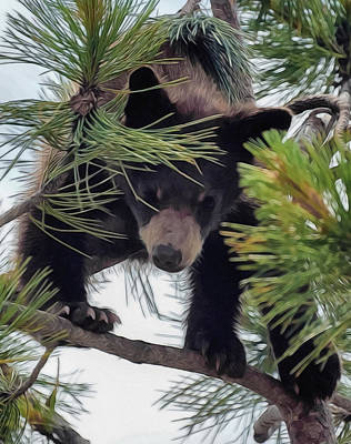 Digital Art - Bear Cub Playing In A Tree 2 by Ernie Echols