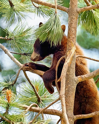 Digital Art - Bear Cub Playing In A Tree by Ernie Echols