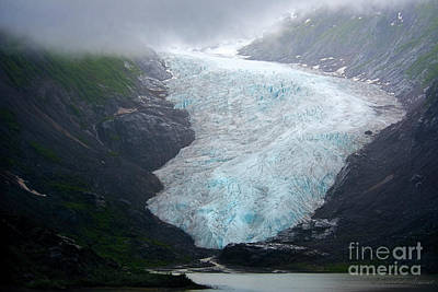 Photograph - Bear Glacier by David Arment