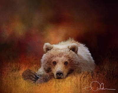 Digital Art - Bear In The Grass - Deep Autumn Colors by Gloria Anderson