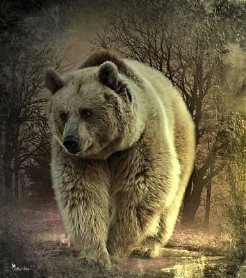 Digital Art -  Bear In The Woods by Ali Oppy