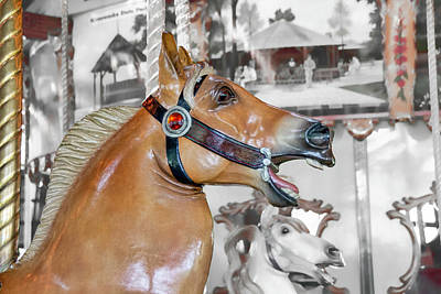 Photograph - Bear Mountain Carousel - Fjord Horse by Kristia Adams