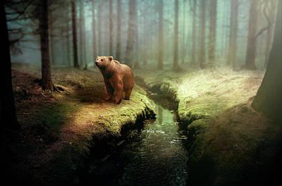 Fantasy Photograph - Bear Mountain Fantasy by David Dehner