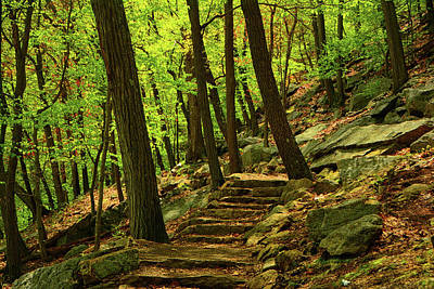 Photograph - Bear Mountain Steps In The Spring by Raymond Salani III