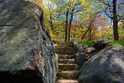 Photograph - Bear Mountain Steps by Raymond Salani III