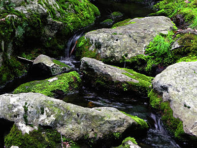 Photograph - Bear Mountain Stream by Raymond Salani III