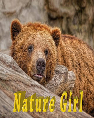 Photograph - Bear Nature Girl by LeeAnn McLaneGoetz McLaneGoetzStudioLLCcom