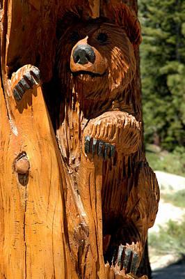 Bear Photograph - Bear On Trail by LeeAnn McLaneGoetz McLaneGoetzStudioLLCcom