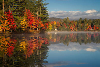 Photograph - Bear Pond Reflections by Darylann Leonard Photography