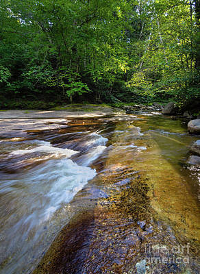 Photograph - Bear River, Grafton Notch State Park, Newry, Maine #10043 by John Bald