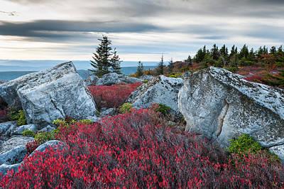 Photograph - Bear Rocks Preserve West Virginia by Mark VanDyke