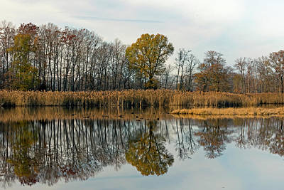 Photograph - Bear Swamp Mirror by Jennifer Nelson