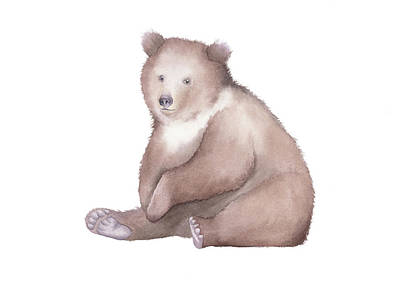Painting - Bear Watercolor by Taylan Apukovska
