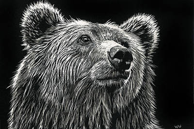 Drawing - Bear by William Underwood