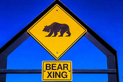 Photograph - Bear Xing by Garry Gay